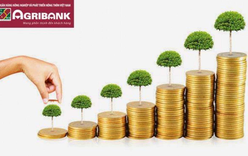 vay tiền ngân hàng agribank
