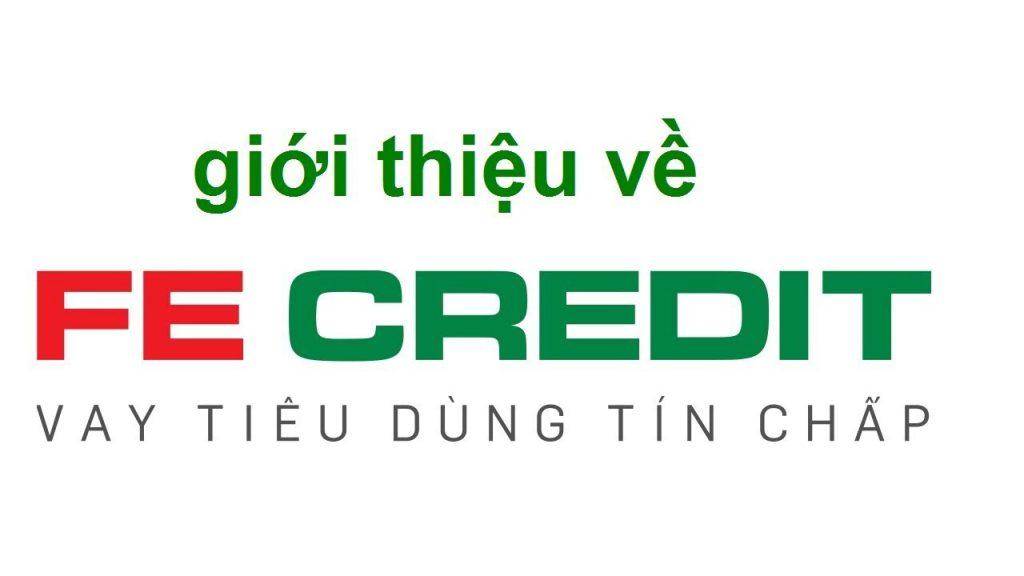 Có nên vay tín chấp tại công ty tài chính Fe Credit?